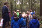 2017 Groep 3 Naar het Bos (100)