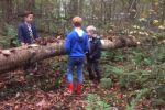 2017 Groep 3 Naar het Bos (103)