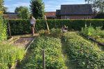 2018 Ouders helpen in de tuin (2)