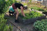 2018 Ouders helpen in de tuin (4)