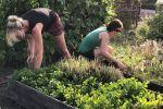 2018 Ouders helpen in de tuin (5)