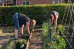 2018 Ouders helpen in de tuin (7)